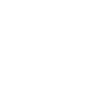 icon_ISO9002